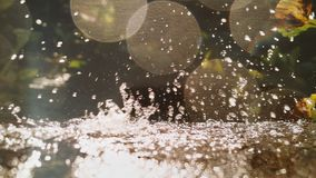 Water. Pure power nature detail background macro life drops Royalty Free Stock Photos