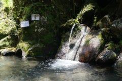 Water for purification ritual in Pura Tirta Sudamala, Bangli, Bali Royalty Free Stock Photo
