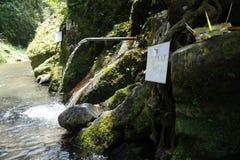 Water for purification ritual in Pura Tirta Sudamala, Bangli, Bali Stock Images