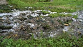 Water quickly flows through the stones stock video