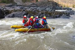 Water Rafting on the Altay. Stock Image