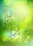 Water rain drops or condensation over blurred green nature background beyond the window, realistic transparent 3d vector. Illustration, easy to put over any stock illustration