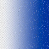 Water rain drops  on transparent background. Realistic vector illustration. 3D bubbles on window glass surface.  Stock Image