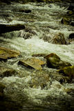Water rapids. In a mountain river Stock Photo