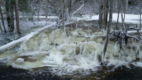 The water rapids coming from the river. In Lahemma. The surrounding is covered with white snow stock video