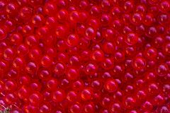 Water red gel balls with bokeh. Polymer gel. Silica gel. Balls of red hydrogel. Crystal liquid ball with reflection. Red texture stock photos
