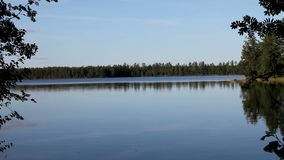 Water. Reflected the blue sky and the surrounding forest stock video footage
