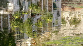 Water reflection background house tree ripples 4k stock footage