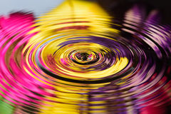 Water reflection of colorful flowers. Water drop on water reflection of colorful flowers Stock Image