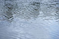 Water reflection on a lake. Wave movement. Nature background. Horizontal Stock Photography