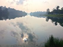 Water reflection in MacRitchie Reservoir Royalty Free Stock Images