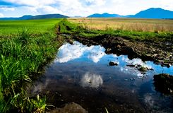 Water, Reflection, Nature Reserve, Water Resources royalty free stock photos