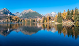 Water reflection at tarn Strbske pleso, Slovakia Royalty Free Stock Photography