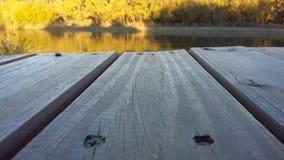 Water, Reflection, Wood, Morning royalty free stock image
