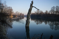 Water reflections. In the calm of morning you have two world Royalty Free Stock Image