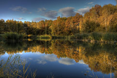 Water reflections in fall Royalty Free Stock Photos