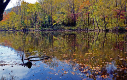Water reflections on a still river in fall. Stock Photo