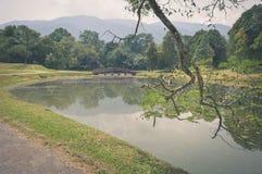 Water reflections in Taman Tasik, aka Lake Gardens, in Taiping, Perak, Malaysia. Beautiful landscape of water reflections in Taman Tasik, aka Lake Gardens, in stock images