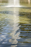 Water reflections. Reflections of trees in the pond Stock Image