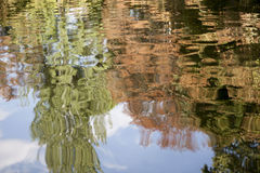 Water reflections. Reflections of trees in the pond Royalty Free Stock Image
