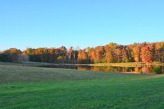The pasture provides a wonderful walking space to view the mountain pond. The water reflects the wonderful fall colors of red and orange mixed with a deep yellow royalty free stock photo