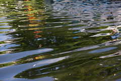 water reflexion Stock Images
