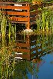 Water reflexion Royalty Free Stock Photos