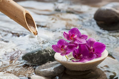 Water relaxation for natural beauty Stock Images