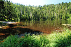 Water reservoir lake at the Black Forest, Germany Royalty Free Stock Photography