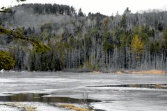 Water Resevoir. Looking out across a pond, with a thin layer of ice, at a hill covered in pines and leafless trees in the early spring Stock Image