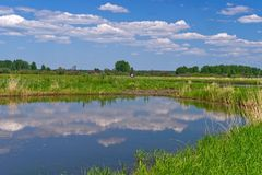 Water Resources, Wetland, Nature Reserve, Marsh stock images
