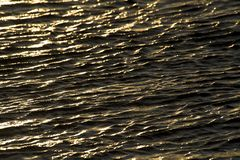 Water Ripple Royalty Free Stock Image