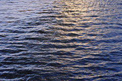Water ripple at dusk Royalty Free Stock Photo