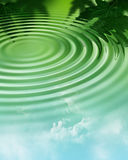 Water ripple in forest stock image