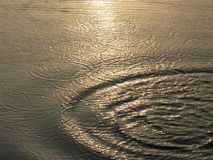Water with ripples Stock Photography
