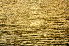 Water ripples in the lake in the evening with gold sunrays reflections ,nature background. Close up Water ripples in the lake in the evening with gold sunrays royalty free stock image