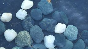 Water ripples. On the pebble stone in a pond stock video footage