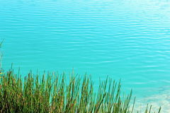 Water with ripples on a pond. Stock Photography