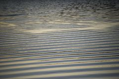Water ripples during sunset stock images