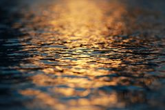 Water Ripples Sunset royalty free stock photos