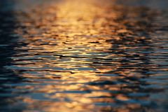 Water Ripples Sunset royalty free stock images