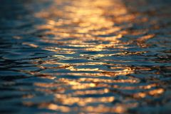 Water Ripples Sunset Stock Photos