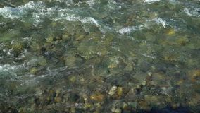 Water river background. close up of stones in pure fresh transparent mountain river water, View from above. Stones can. Water river background. close up of stock footage
