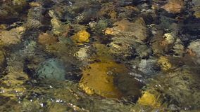 Water river background. close up of stones in pure fresh transparent mountain river water, View from above. Stones can. Water river background. close up of stock video