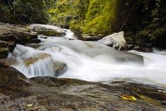 Water river at Doi Inthanon National Park, Chiang Mai, Thailand. stock photo