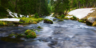 Water of river flows through mossy rocks Stock Photography