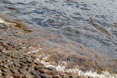 The water of the river Neva washes the stones of the base of Peter-Paul Fortress Fortress in Saint Petersburg, Russia. The water of the river Neva washes the Stock Photo