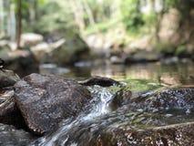 Water river rock tree jungle trip waterfall Stock Photos