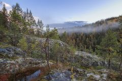 Water on rock in a mountain forest landscape. Water on a rock in a mountain forest landscape Royalty Free Stock Images