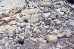 Water rocks. Rocks on a beach seen wavy through the water royalty free stock photography